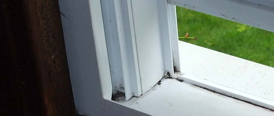 Leaky Windows Can Cause Mold Issues
