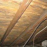 Cladosporium-wood-sheathing