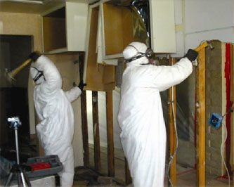 Mold Inspectors tear down walls that are infected with Mold