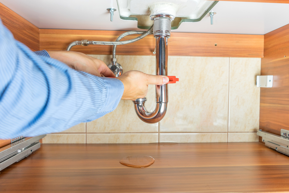 Plumbing Problems and Mold Growth: 6 Steps for Preventing an Infestation