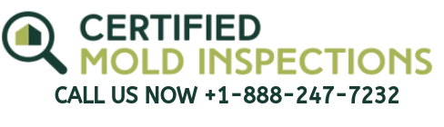certified mold inspections logo call now