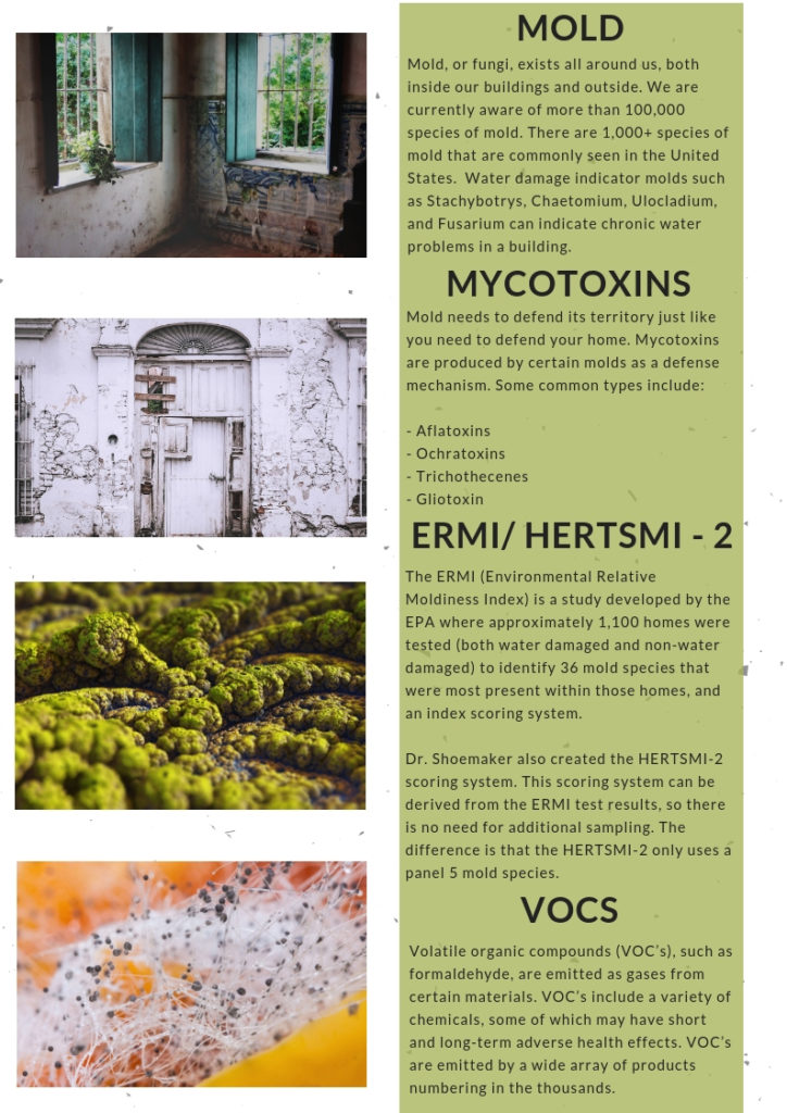 mold mycotoxins vocs