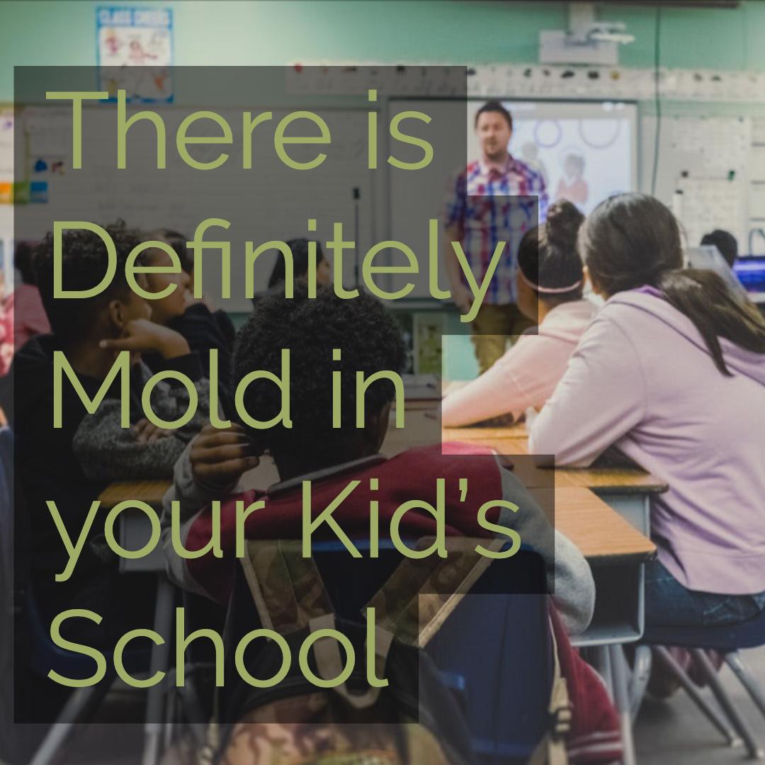 mold in schools